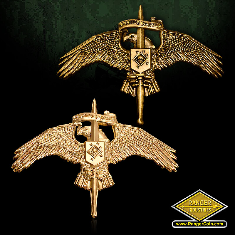 MARSOC Badge w Raider Insignia